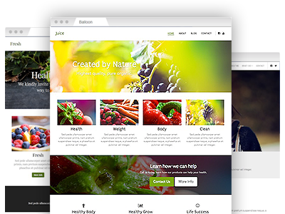 A variety of easy–to–re–design website themes